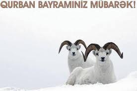 Qurban Bayramınız Mübarək.!
