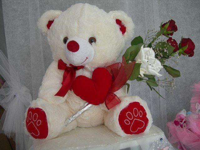 Teddy (2)