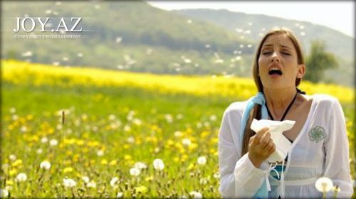 Allergiyaya nə səbəb olur?